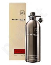 Montale Paris Aoud Lime, kvapusis vanduo moterims ir vyrams, 100ml