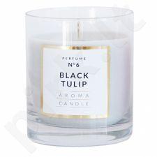Žvakė Classic Stikle