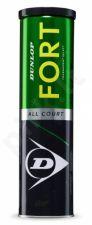 Lauko teniso kamuoliukai FORT ALL COURT 4-tin
