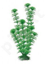 Plastikinis augalas CABOMBA mažas