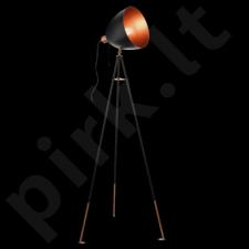 Grindinis šviestuvas EGLO 49386 | CHESTER