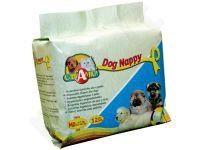 Dog Nappy sauskelnės šunim MD 3-6kg