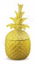 Indas Ananasas
