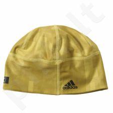 Kepurė  treniruotėms Adidas Terrex Beanie S94148