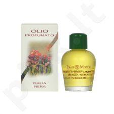 Frais Monde Black Dahlia, parfumuotas aliejus moterims, 12ml