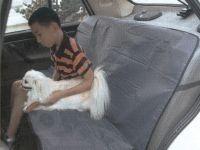 Patiesalas ant auto galinių sėdynių