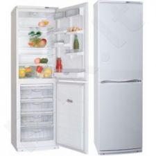 Šaldytuvas ATLANT XM 6025-031/100 A+