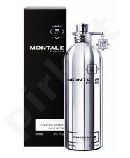 Montale Paris Ginger Musk, kvapusis vanduo moterims ir vyrams, 100ml