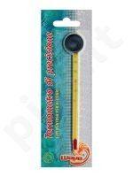 Termometras stiklinis