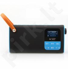 Portable Wireless Bluetooth speaker with FM Radio, 3W