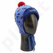 Vaikiška kepurė VKP393